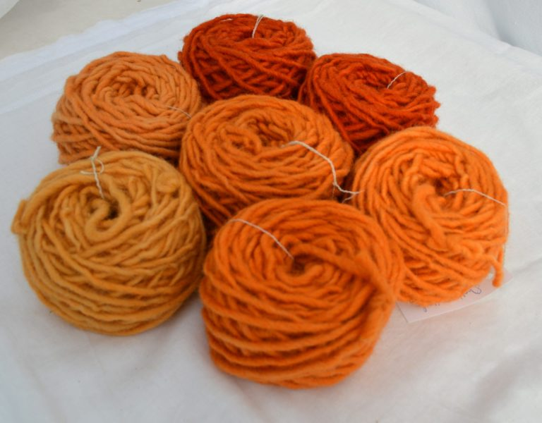 Wool Dye with Dahlia Flowers